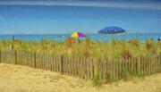 Beach Grass and Umbrellas   BS26