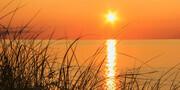 Beachgrass at Sunset   SS7