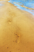 Nothing But Footprints  BS15