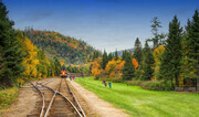 Agawa Canyon Train Tour